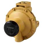 美国REGO 4286-10系列 4289-10系列低压调节阀
