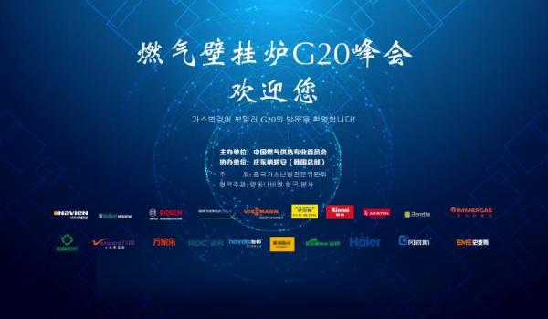 中国燃气壁挂炉G20